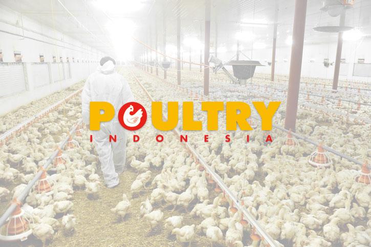 majalah-poultry-indonesia